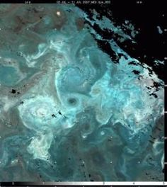 This near-true color MODIS satellite image shows a coccolithophore (phytoplankton) bloom in the Iceland Basin.