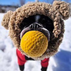 BT Winter Play!