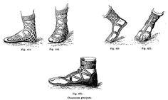 Los primeros zapatos que usaron los griegos constituian de una suela de cuero, de madera o de fibra vegetal asegurada al pie por medio de correas de piel de ganado.