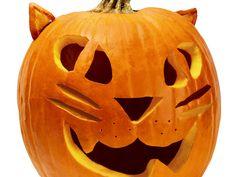 easy cat pumpkin carvings