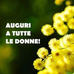Auguri a tutte le donne del mondo! best wishes to all women in the world  #8marzo #festadelladonna