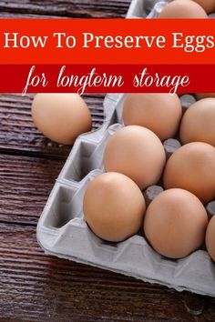 Did you know that you can preserve eggs to be stored for months with NO refrigeration? My grandmother would tell me stories that they stored eggs covered in salt under the bed. Canning Recipes, Egg Recipes, Light Recipes, Egg Dish, Dehydrated Food, Preserving Food, Baking Tips, Food Hacks, Cooking Hacks