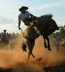 Argentina is famous for gauchos - skilled horseman. Tempted to ride with the gauchos out in Argentina, then travel with us, Journey Latin America, we can make these dreams come true. Rio Grande Do Sul, Bronco Horse, Spanish Speaking Countries, Cowboy Horse, South America, Latin America, Piazza Navona, Rodeo, Trip Planning