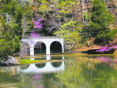 Redbuds bloom outside the cave mouth at Dunbar Cave State Natural Area. Natural Wonders, Weekend Getaways, State Parks, The Outsiders, Explore, Adventure, Places, Nature, Naturaleza