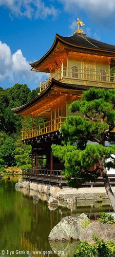 Golden Pavilion (Kinkakiji), Kyoto, Kansai, Honshu, Japan by Ilya Genkin This placing is amazing - covered in gold leaf. There is also a silver pavilion in Kyoto also (Ginkakuji) Kamakura, Laos, Places Around The World, Around The Worlds, Japanese Temple, Japanese Geisha, Japanese Kimono, Monte Fuji, Japon Tokyo