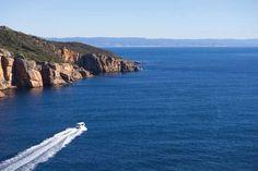 Surroundings & Wildlife by Saffire Freycinet, Tasmania