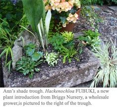 Trough Love. diy tutorial on how to make some hypertufa troughs for your garden