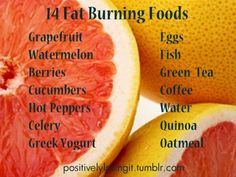 14 fat burning foods.
