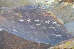 Grapevine Canyon Anthropomorphic petroglyphs  depicting sheep in the Grapevine Canyon. (PID:131814)