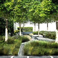 Climate Calm Garden by Nicholas Dexter / on TTL Design
