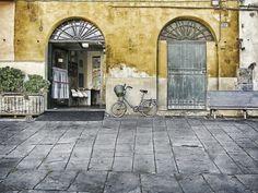 Dan Agam, Lucca