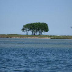 Maasholm an des Ostseeküste ... oder der doch Südsee ;-)