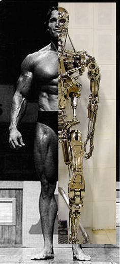 http://www.therpf.com/f11/does-t-800-endoskeleton-really-fit-into-arnolds-body-101761/