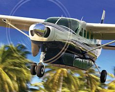 Cessna's line of Citation jets, Caravan turboprops and classic pistons dominate the sky. From learning to fly to flying your business, you'll find your aircraft solution. Cessna Caravan, Cessna Aircraft, Bush Plane, Airplane Decor, Private Plane, Grand Caravan, Concorde, Aviation Art, Fighter Jets