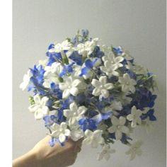 white stephanotis with blue flower