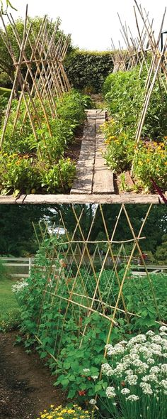 21 beautiful and DIY friendly garden trellis and structures, such as cucumber trellis, bean teepees, grape tunnels, pergolas, screens, etc. Create productive and enchanting garden spaces with trellis…MoreMore #GardeningDesign