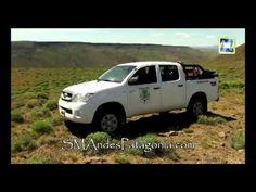 Painamal, el cóndor rehabilitado en Bs. As. fue liberado en Paraje Malleo - YouTube