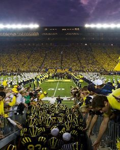 The Big House in Ann Arbor