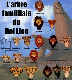 Funny pictures about The Lion King family tree. Oh, and cool pics about The Lion King family tree. Also, The Lion King family tree. Simba Disney, Disney And Dreamworks, Disney Pixar, Walt Disney, Disney Hercules, Disney Family, Disney Jokes, Disney Facts, Funny Disney Movie Quotes
