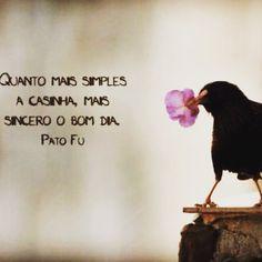 ✨Bom Dia✨☕️☀️❤️ #espiritualidade #bomdia #gratidão #simplicidade#universo#vida#sabedoria #mensagem#alma#namaste#goodvibes #boasvibracoes#paz#vivamnobem#amor#