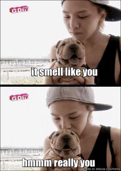 scent of gaho