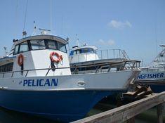Deep Sea Headquarters | Fishing Trips in Port Aransas, Texas