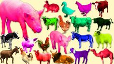 Colours #  Wild Animals # Form Animals ## Dinosaurs Names  || Kids Nurse...