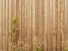 BFA   Multi-aged community centre #architecture #mountains #contemporary #modern #Burri #art #colors #color #roof #garden #facade #garden #earthquake #minimal #Poggio #Picenze #Abruzzo #Italy #studio #progettazione #architettura #interni #esterni #Trento #Bolzano