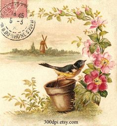 MI BAUL DEL DECOUPAGE: VINTAGE BIRDS II