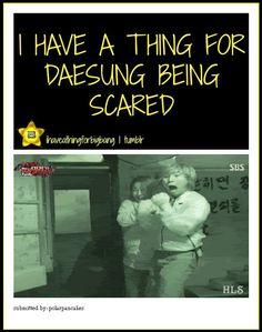 I have a thing for Daesung being scared [gif] So True! Daesung, Vip Bigbang, Boom Shakalaka, K Quotes, Bigbang G Dragon, Big Bang, Kpop Guys, Jiyong, Pop Bands