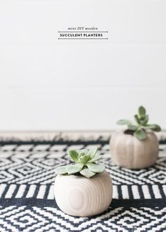 How cute are these homemade wooden succulent planters? So going to try this as a homemade gift idea!