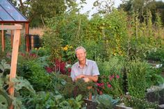 """How To Turn A """"Dead"""" Lawn Into An Abundant Living Garden (No Digging…"""