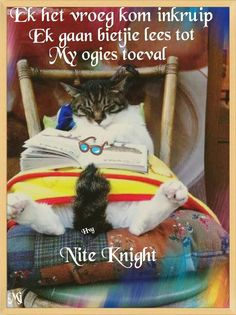 Nite nite Me Quotes, Qoutes, Goeie Nag, Good Night Quotes, Day Wishes, Afrikaans, Friend Pictures, Cat Breeds, Bedtime