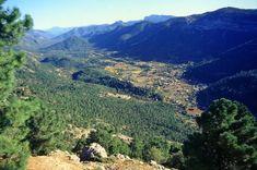 Parque natural de las Sierras de Cazorla, Segura y Las Villas - Wikipedia, la enciclopedia libre