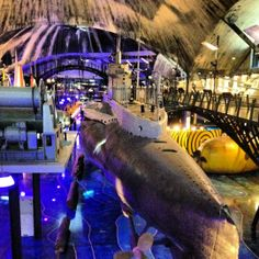 #Lennusadam #SeaplaneHarbour 1900-luvun alun vesitasolentokoneiden hangaareihin on rakennettu museo, jossa tutustuu historiaan veden alla, pinnalla ja ilmassa.