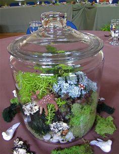 Moss/terrarium centerpieces!!!   by Jon and Carla's Wedding, via Flickr