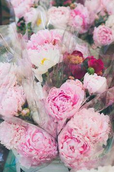 farmers market pink peonies