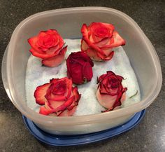 How to dry a flower with silica gel