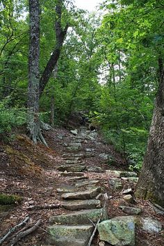 Cool stone steps on the Nebo Steps Trail