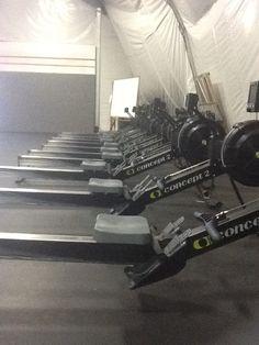 rowing machine warm up