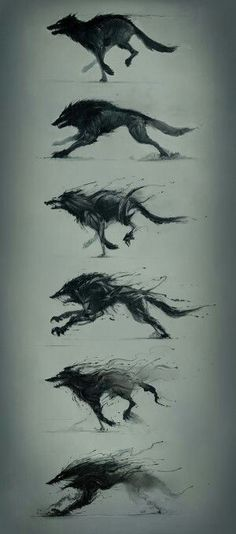 Hunger is a monster by Platine Images Wolf Sketch / Drawing Animation Illustration Inspiration Fantasy Kunst, Fantasy Art, Fantasy Wolf, Creature Design, Mythical Creatures, Dark Art, Amazing Art, Art Drawings, Wolf Drawings