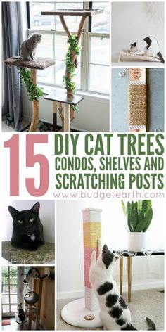 15 DIY Cat Trees, Condos, Shelves, and Scratching Posts - Cute + Funny Cat Ideas and Cat DIYs - [post_tags Diy Cat Tree, Cat Tree Condo, Cat Condo, Animal Projects, Diy Projects, Pallet Projects, Matilda, Cat Ideas, Cat Towers