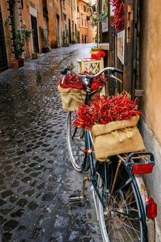 Vintage bicycle with burlap baskets of hot peppers - on a rainy cobblestone street in Rome.