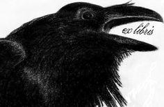 Ex Libris - Raven @Kim Kiwi : One for you