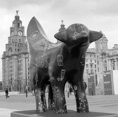 Goes Black and White Lambanana's of LiverpoolLambanana's of Liverpool Liverpool Town, Liverpool History, British Invasion, Animal Sculptures, Public Art, Travel Photos, Britain, Past, England