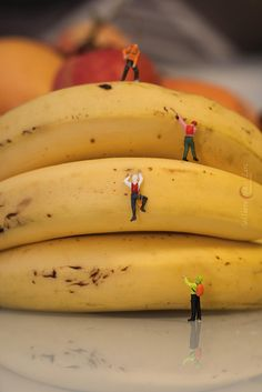 Mini Banana mountain | Flickr - Photo Sharing!