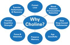 Chances are you are low on choline and you don't even know it! Since it's very important to cells in the brain, your heart, your liver and so much more, don't go another minute without understanding choline.