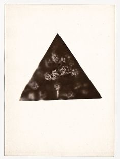 One of a kind Black bubbles photogram  6x8inch by AdaLovesTheRain, $59.00