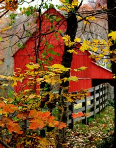I vascillate on what color I should paint my barn. And then I see pictures like this and say--how could it be anything other than red?