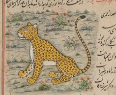 Persian Cheetah in Farah nāmah Century Persian Manuscript Medieval Manuscript, Medieval Art, Fabulous Beasts, Asian Cat, Matchbox Art, Iranian Art, Thai Art, Book Of Hours, Cubism